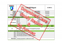8D Report Example