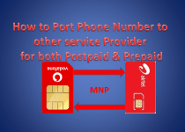 How to Port Phone Number